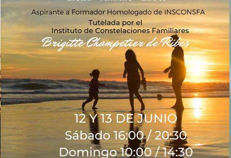 Curso online de Constelacioens familiares-12-13 de Junio
